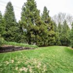 Plenty of room for kids or pets to run & play in this beautiful green space.